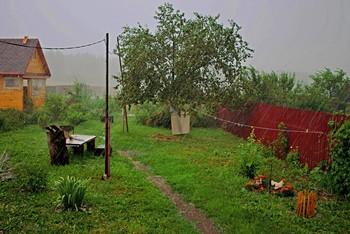 """Дождь в июле. / """" """" """""""