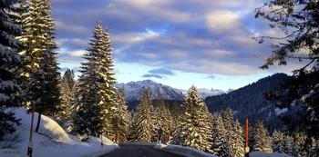 В Австрийских альпах / И снежные пики высокие  И ветер порывистый дул нам в пути..  Ели высокие,реки далёкие  Картины с природы готовы мы были  С собой унести..