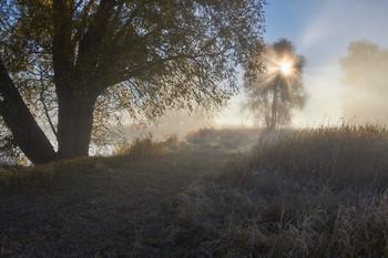 Без названия / рассвет, озеро, туман