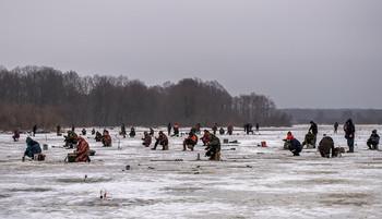 Видимо невидимо / Зимняя рыбалка