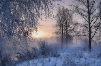 winter morning / -------------