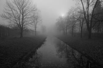 Тревожное утро... / Туманное осеннее утро
