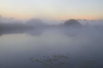 Туманное утро / Рассвет,туман,озеро