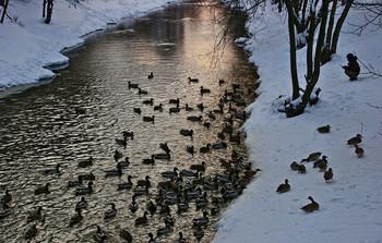 Вечерняя прогулка... / Московская речка Лихоборка...