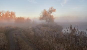 Без названия / туман,озеро,рыбак