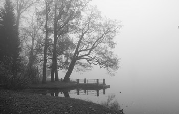 Осеннее утро... / Екатерининский парк