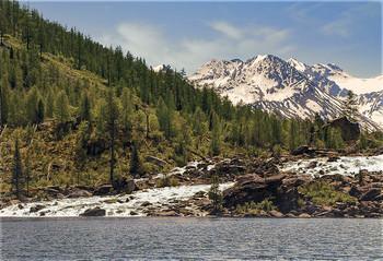 шумы / Вода шумным потоком перетекает между огромных камней из одного озера в другое, а по берегам растет Бадан и кусты можжевельника.