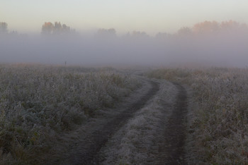 Без названия / туман,дорога,рассвет