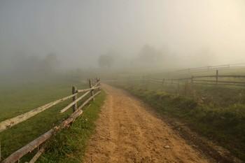 Дорога в густой туман / Из прогулок по Закарпатью