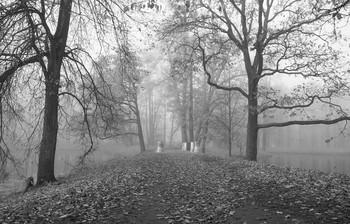 Осеннее утро... / Александровский парк