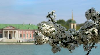 Майский цвет... / Смотрим на усадьбу Кусково с другой берега пруда...