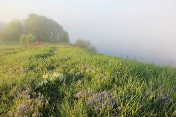 Утро в походе / Берег реки Стырь