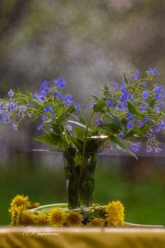 Встречаем весну цветами! / весенние цветы