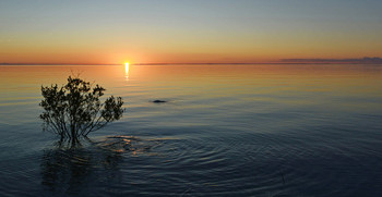 На острове Валаам / ***