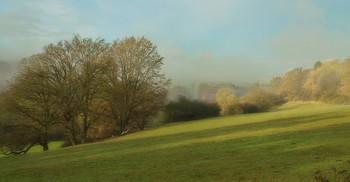 Туман и солнце .... / Осенний пейзаж .Этюд.