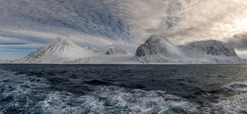 У северных берегов / Арктика