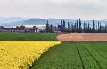 Агрономия / ........