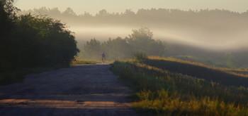 Ранним утром / утро, туман, полесье, Беларусь
