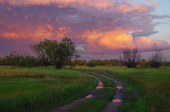 После грозы / летний закат, Беларусь, полесье