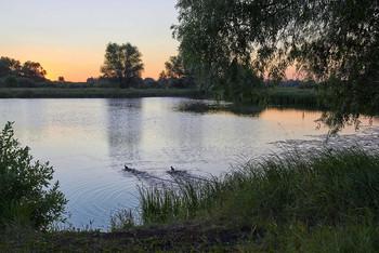 / рассвет,озеро,утки