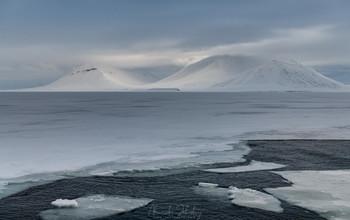Белое безмолвие / Арктика