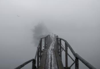 Туманная бездна. / Вятский край...
