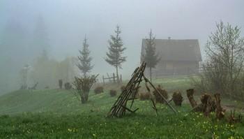 20 / Весна в Закарпатье. Лазещина. Май 2019