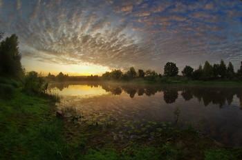 Рассвет / летнее утро, речная заводь