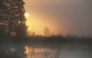 утро начинается... / ..сегодня..,а впереди еще целых 2 дня лета.. Приятных всем выходных..))