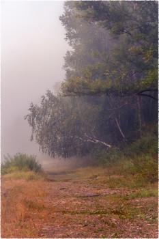 Туман / Утро. Туман на реке.