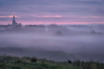 Котик в тумане / Суздаль. Последнее утро лета.