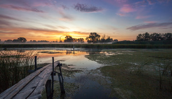 Скользя по глади вод рассветных... / На свете есть только два грандиозных шоу: вода и облака. И.Бродский