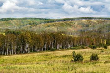 Начало красивых и высоких Сибирских Саянских гор... / Без описания
