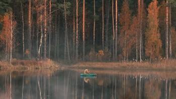 В тихий вечер на рыбалке / Мне не надо ни Кипра, ни Лувра Я по озеру в лодке плыву, Отдыхаю от крика и шума, Только здесь я покой нахожу.  Пусть сегодня улов не богатый, И садок мой по прежнему пуст, Я любуюсь вечерним закатом И землей под названием Русь.