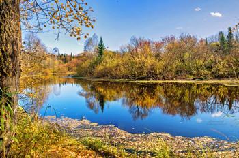 Сентябрьским деньком... / По листьям опавшим деревья не плачут... Им новые листья подарит весна... Уметь не жалеть - вот поистине счастье... Не плакать о том, что ушло навсегда...