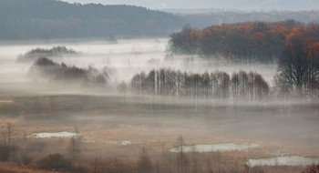 Сквозь туман / Утро уходящей осени