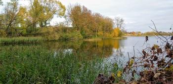 ОСЕНЬ ПО ОЗЕРУ ГУЛЯЛА... / Осень. Сказочный чертог, Всем открытый для обзора. Просеки лесных дорог, Заглядевшихся в озера.