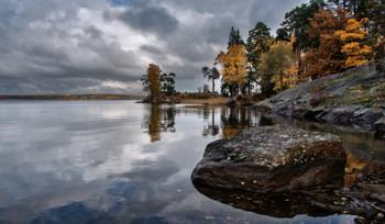 Осень. / Парк Монрепо.
