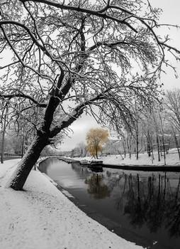 утреннее... / неожиданно в конце октября уже лег снег...