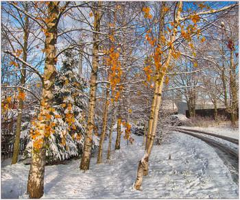 Последний аккорд осени / Зарисовки на сельских улочках. Первый снег.
