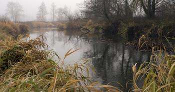 / Ноябрьское утро на реке