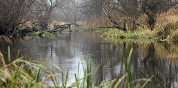 / осенняя река
