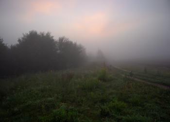 Туман на рассвете / Пейзаж Беларуси
