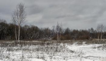 Зима, начало / Выпал снег