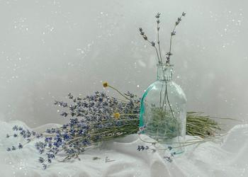 Зима пахнет сухой лавандой... / ...