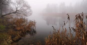 Утром / На реке