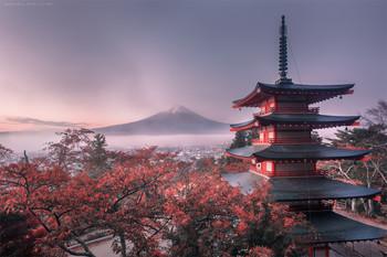 新年 / Япония.