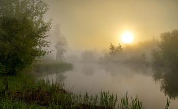 Туманный рассвет / утро,туман,река