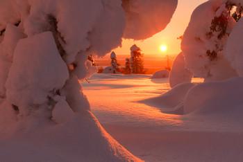 Клубничное суфле... / Финляндия, январь 2020 На следующий сезон приглашаю в Финляндию в декабре и январе Подробности туров на сайте