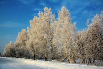 Сибирские морозы / От солнышка снег и иней на деревьях и кустах становится то розовым, то желтым, то голубым, а в тени ярко-синим, переливаясь разноцветными огнями , как драгоценные камушки.